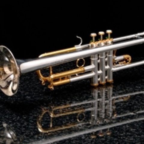 Silver and 24ct Gold Trumpet